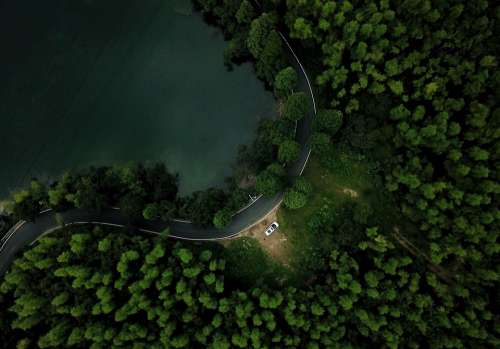 Road Forest Green Trees Car Drone Flight Lake