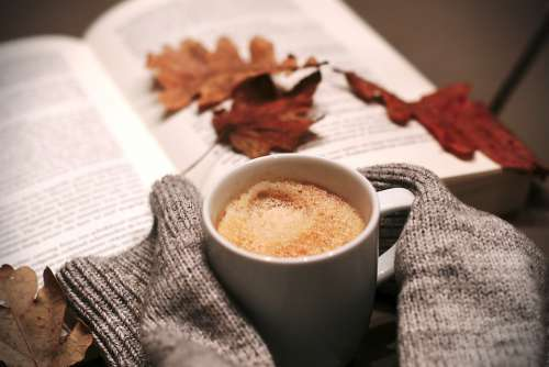 Coffee Food Drink Hottest Leaves Winter Cold