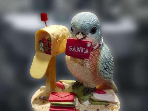 Blue-Bird And Mailbox