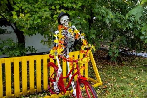 Flowered Skeleton