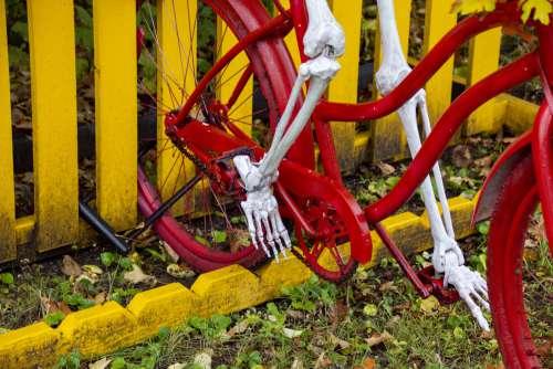 Skeleton Legs On Bike Pedals