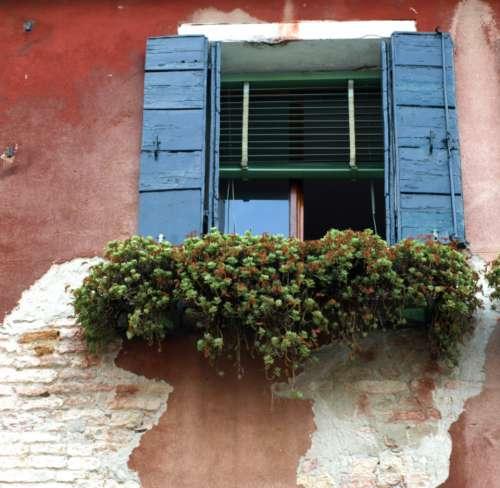 exterior window wall flower shutters