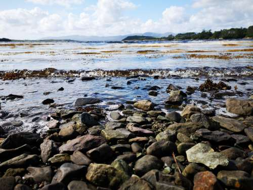 Waves Bubble Over Riverbank Stones Photo