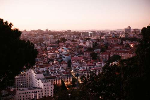View Of Lisbon City Skyline And Sunset Framed By Trees Photo