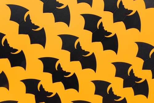 Halloween Bats Background Photo
