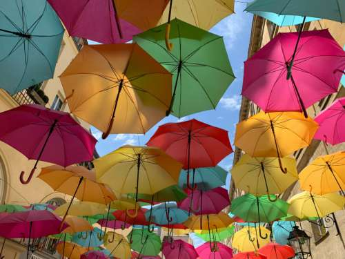 Colored Umbrellas Street Free Photo