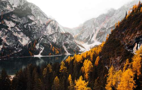 Wonderful Mountains in Fall Colors Free Photo