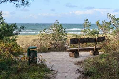 Baltic Sea Beach Fischland Dierhagen Sea Wind