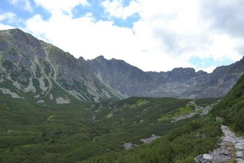 Buried Mountains Hala Gąsienicowa Forest Meadow