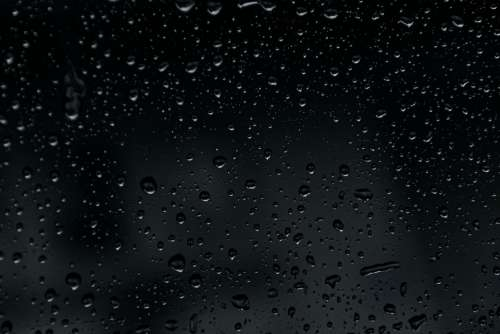 Rain Wet Drip Weather Raindrop Background Nature