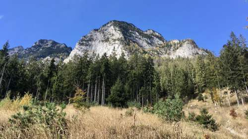 Indian Summer Austria Mountain