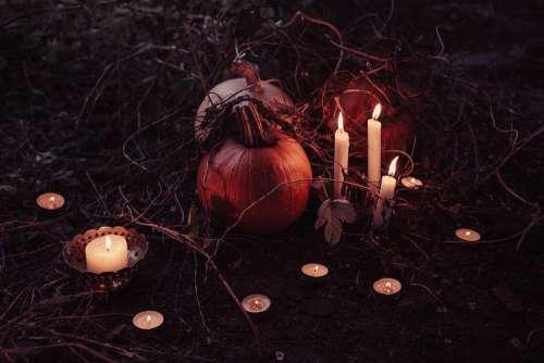 Pumpkin Trick Or Treat Halloween November Grass