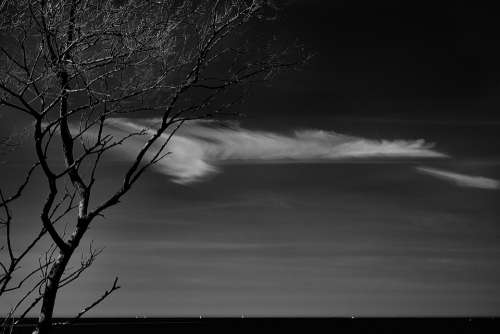 Cloud Sky Tree Contrast Black And White Dark Hell