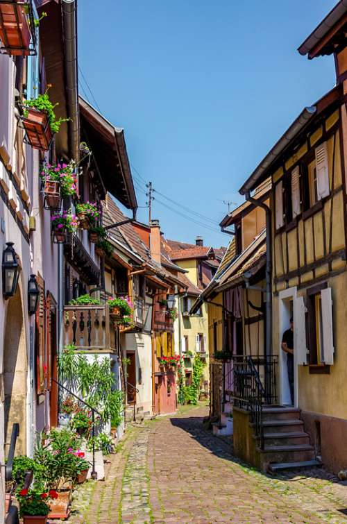 Alsace Summer France Truss Floral Decorations
