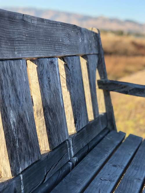 Bench Peaceful Park Rest Landscape Freedom