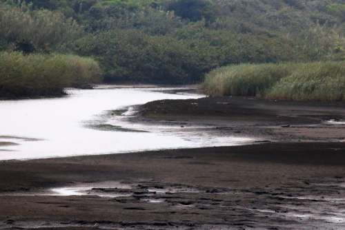 Layer Of Shallow Water In A Lagoon