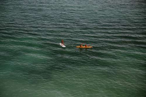 Adventurists Paddle On Open Green Water Photo