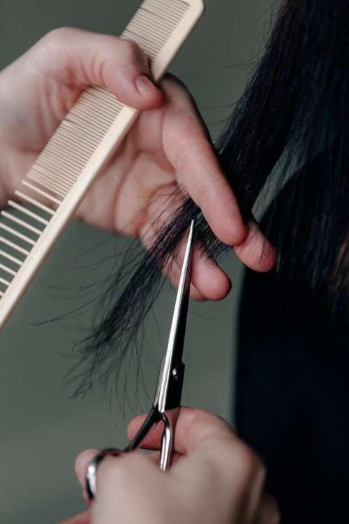 Close Up Cut Photo
