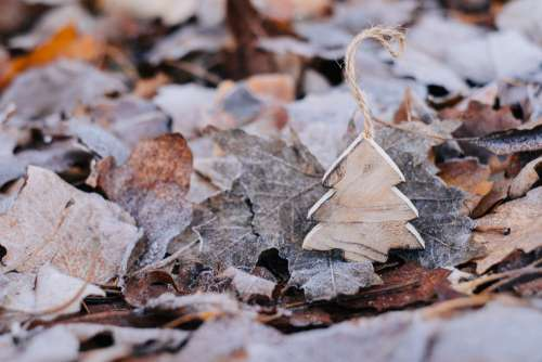 Wooden Christmas tree on frosted leaves 3