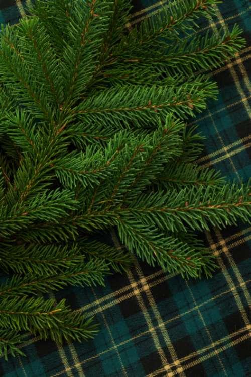 Christmas Seasonal Background Free Photo