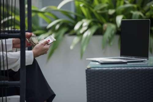 Businesswoman Laptop Money Free Photo