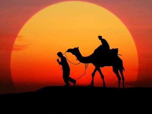 Camel Sunset Silhouette Desert People Sky