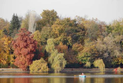 Autumn Trees Lake Forest Landscape Nature Water