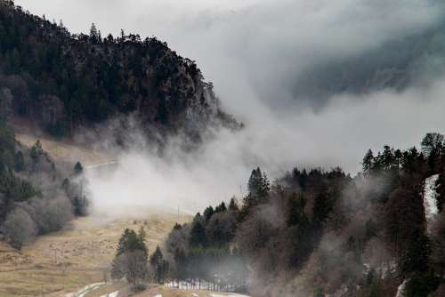 Fog Mountains Mood Grenchenberg Nature Forest