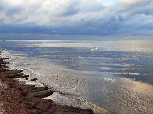 Baltic Sea Mirroring Water Coast Beach
