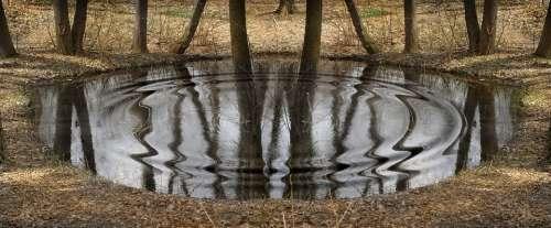 Pond Autumn Forest