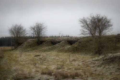 Bunker War Landscape Nature Tree Cold Mood