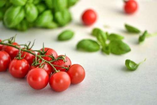 Tomatoes Basil Food Tomato Italian Fresh