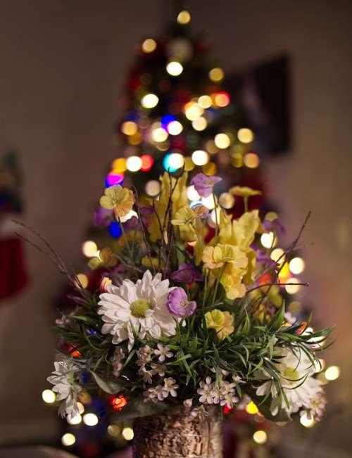 X-Mas Holiday Christmas December Celebration