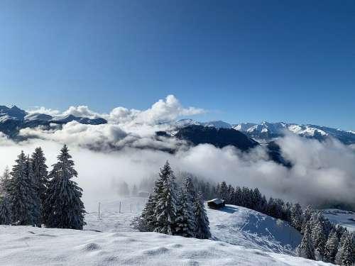 Graubünden Praettigau East Switzerland Hochnelbel
