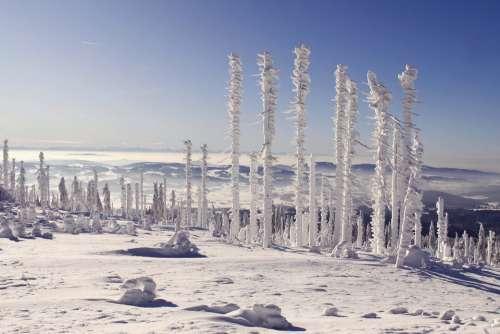 Bavarian Forest Three Chair Snow Landscape