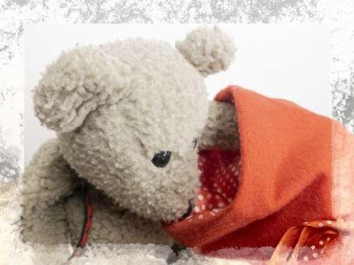 Christmas Teddy Bear Framed White