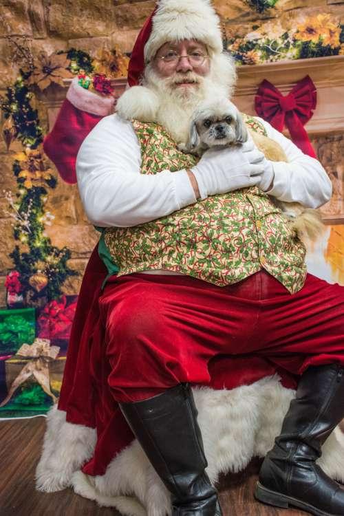 dogs santa love santa claus christmas