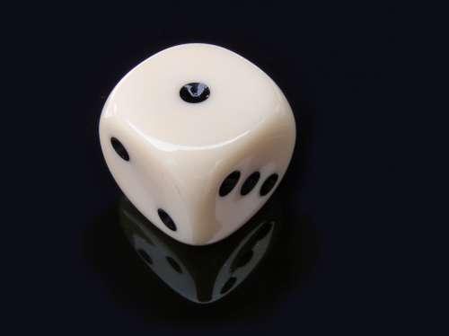 dice dice game gambling game play
