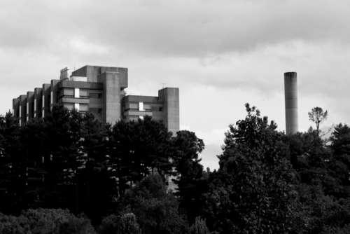 monochrome building exterior factory trees
