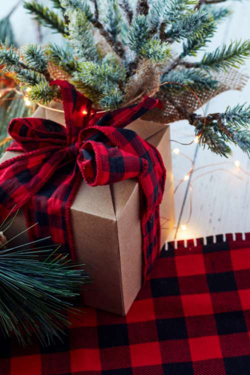 seasonal backgrounds christmas ribbon pine