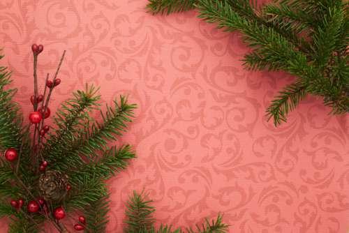 seasonal backgrounds christmas flat lay branches