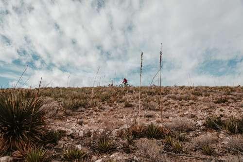 Biking In The Desert Photo
