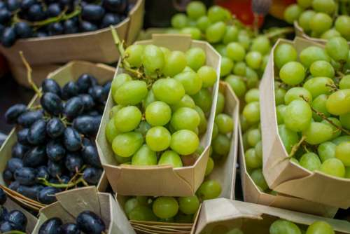 Fresh grapes in paper boxes
