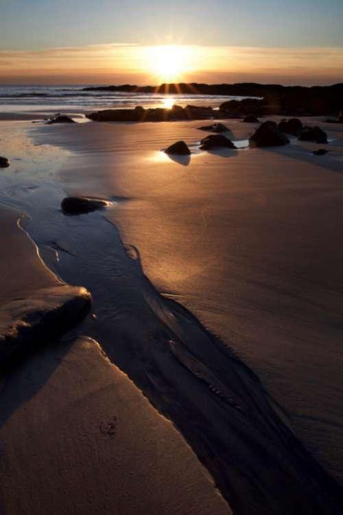 Sandy Beach Sunrise Free Photo