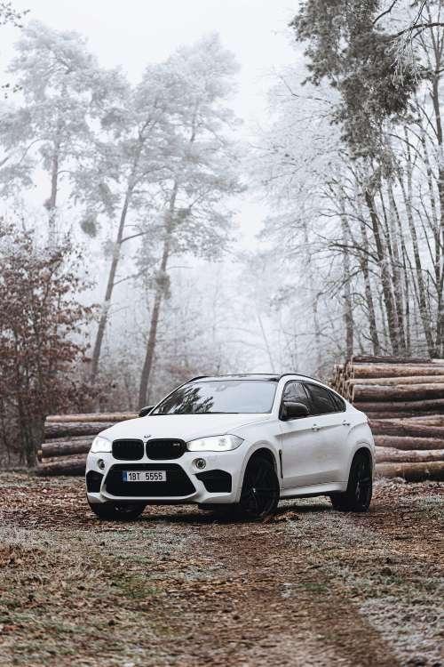 BMW X6M in Frozen Forest Free Photo