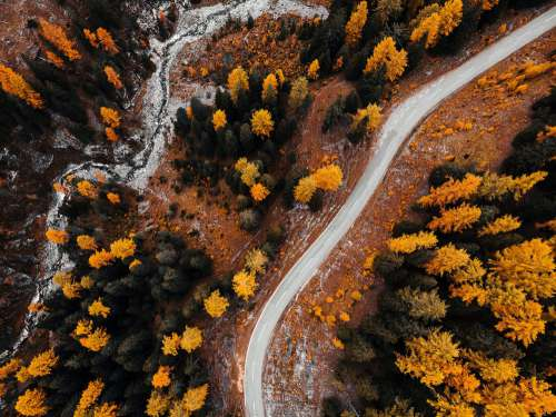 Autumn Forest Road from Above Free Photo