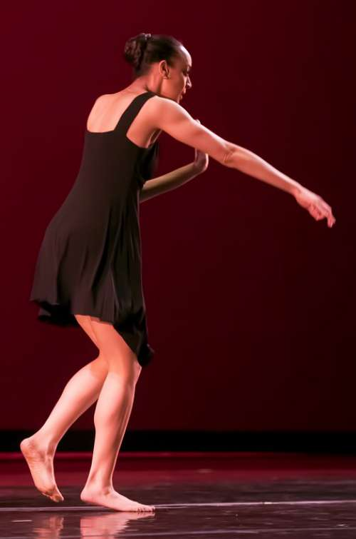 Dance Dancer Dancing Woman Girl Elegance People