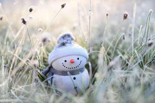 Snowman Winter Grasses Hoarfrost Figure Funny