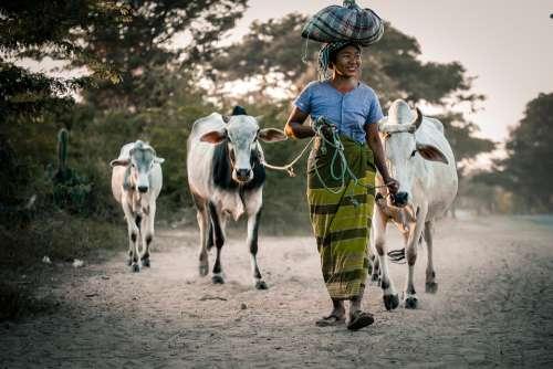 Myanmar Woman People Female Happy Outdoor