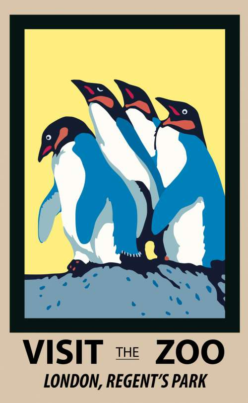 Penguins Zoo Poster